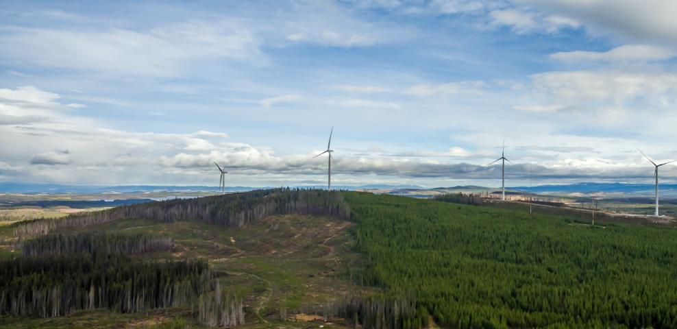 turbines7